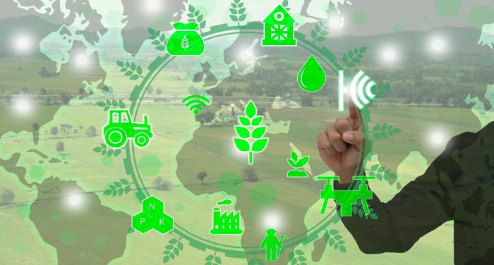 ¿Tienes un proyecto del sector agroalimentario y buscas financiación?